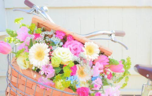 お花や植物からパワーをもらおう!